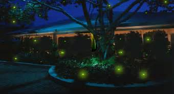 Fire Fly Lights Firefly Magic 174 Firefly Lights Amp Lighting Help Website