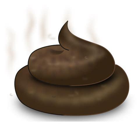 katzenklo nicht stinkt wenn das katzenklo stinkt mittel gegen 252 blen katzenklo