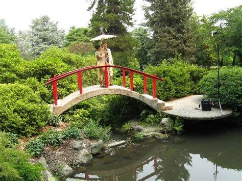 Kubota Gardens Seattle by Moon Bridge Picture Of Kubota Garden Seattle Tripadvisor