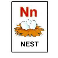 Printable Alphabet Flash Cards N Is For Nest Flash Card