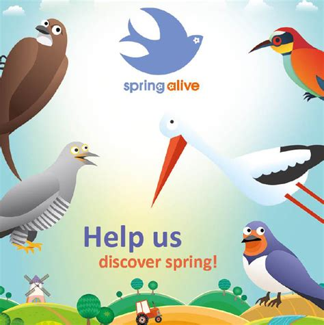 spring alive springs to action for migratory bird