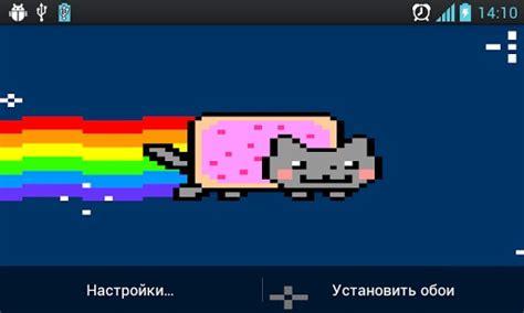 Nyan Cat Meme - real nyan cat memes