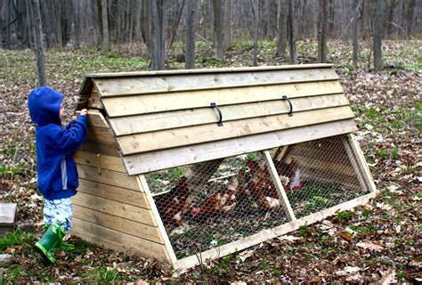 Backyard Chicken House The High Chair Wordless Wednesday Our Backyard Chicken Coop