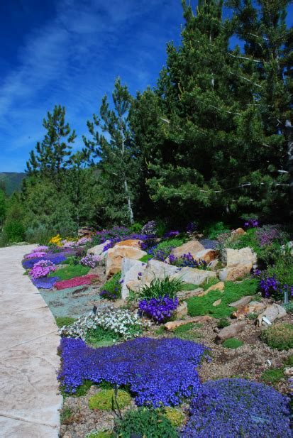 Betty Ford Alpine Gardens by You Re Guaranteed To Colorado S Betty Ford Alpine Gardens