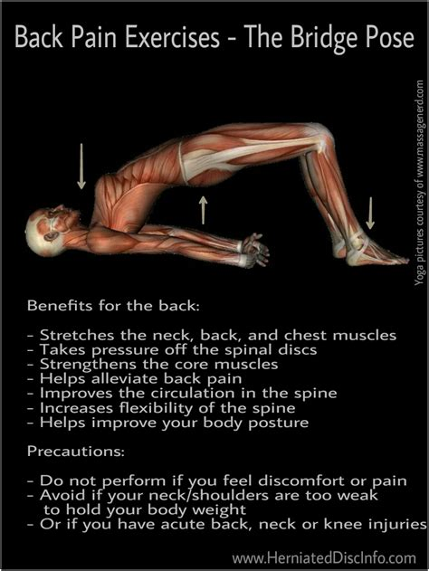 exercises for herniated disc herniated disc information