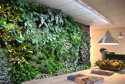 imagenes muros verdes jardines verticales y su contribuci 243 n al medio ambiente