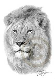 pencil drawing print a4 size artwork signed