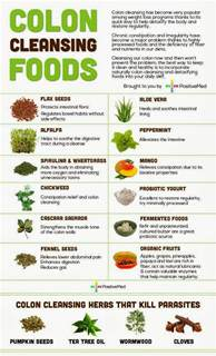 diet infographic colon cleansing foods