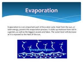 Types Of Garden Soil - evaporation