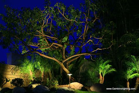 low voltage landscape lighting systems gambino landscape lighting hybrid low voltage gambino