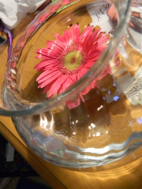 How To Make Flowers Float In Vases by Floating Flower In Glass Vase By Artbyluumi On Deviantart
