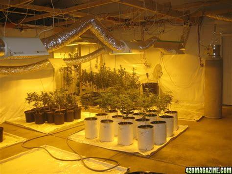 how to make a grow room 4twenty4all new grow room strains 2010