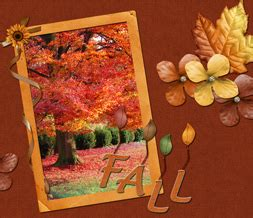 e63 themes tree fall quotes wallpaper pretty fall tree background