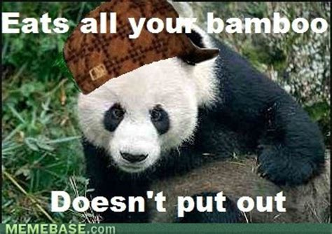 Sex Panda Meme - japan it s a wonderful rife a panda eats shoots leaves