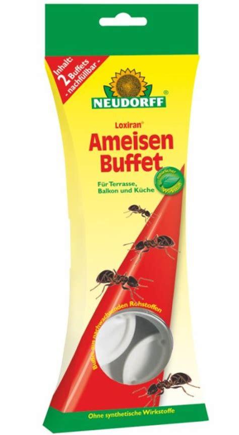 Hilfe Gegen Ameisen Im Garten 3360 by Hilfe Gegen Ameisen Ungeziefer 1 X 1 Erste Hilfe Gegen
