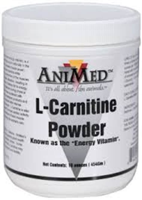 l carnitine for dogs l carnitine powder for horses all veterinary supply