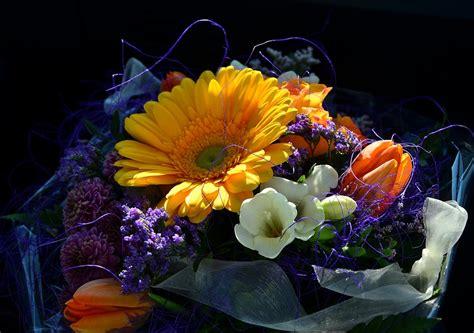 mazzo di fiori colorato foto gratis mazzo colorato compleanno fiori immagine