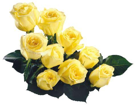 marcos gratis para fotos flores png ramos etc renders marcos gratis para fotos flores png ramos etc renders