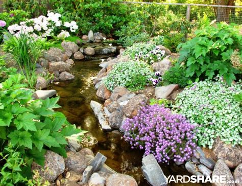 backyard streams landscaping ideas gt backyard stream yardshare com