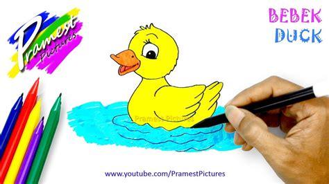 bebek  menggambar  mewarnai gambar hewan  anak anak youtube