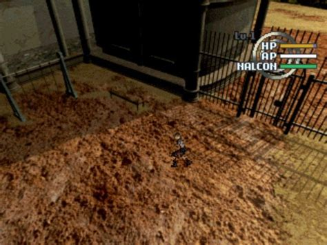dog running around house running around house 28 images running around the house a running around the base