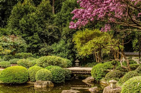 Brisbane Botanic Garden Brisbane Botanic Gardens Toowong Australia The Japanese Gardens