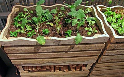 Garten Hochbeet Pflanzen by Bild 7 Hochbeet Bauen Aus Kisten Oder Latten Einen
