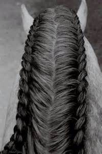 best 20 horse hair styles ideas on pinterest horse hair