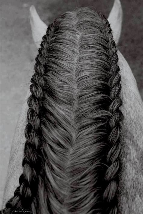 horse shoo for african american hair best 25 horse hair styles ideas on pinterest native