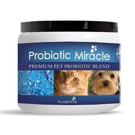 probiotic for dogs nusentia probiotic miracle for dogs and cats 44g