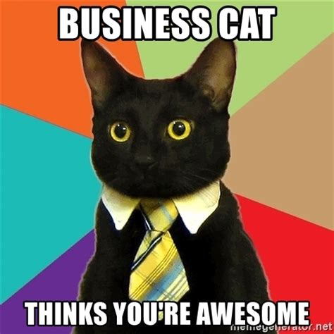 Office Cat Meme - business cat thinks you re awesome business cat meme