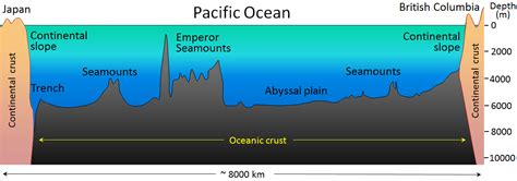 the topography of the floor is like 18 1 the topography of the sea floor physical geology