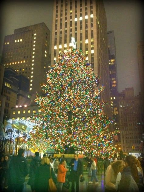 christmas tree in times square christmas outdoor and