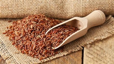 manfaat beras merah  bayi  resepnya yuk coba