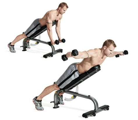 bench back exercises the 30 best back exercises of all time