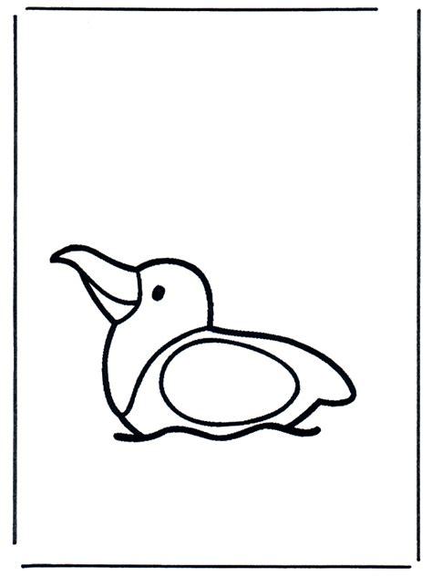 gabbiano uccello gabbiano sullacqua uccelli