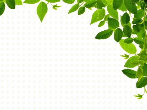 Real Leaves Backgrounds Nature Templates Free Ppt Grounds And Powerpoint Nature Ppt Template