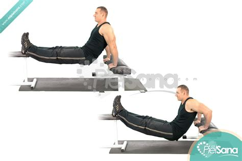 bench dips triceps bench dip 28 images how to do triceps dips on
