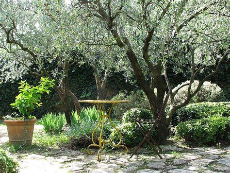 Arbre de jardin : liste   Ooreka