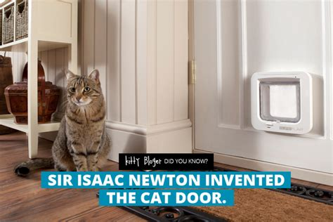 Who Invented The Cat Door by Fact Sir Isaac Newton Invented The Cat Door Bloger