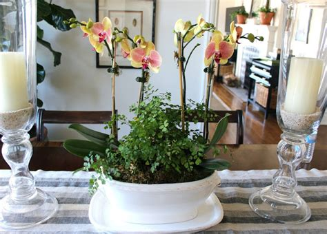 Dining Room Table Centerpieces Everyday by Classic Casual Home Dining Room Table Centerpieces