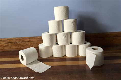 How They Make Toilet Paper - the about toilet paper bedtime math daily math