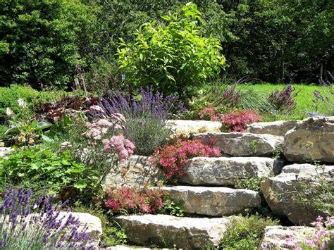 steingarten hanglage steingarten anlegen tipps und ideen garten mix