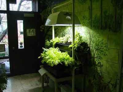 indoor gardening design ideas