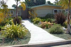drought tolerant front yard sarah and dave pinterest