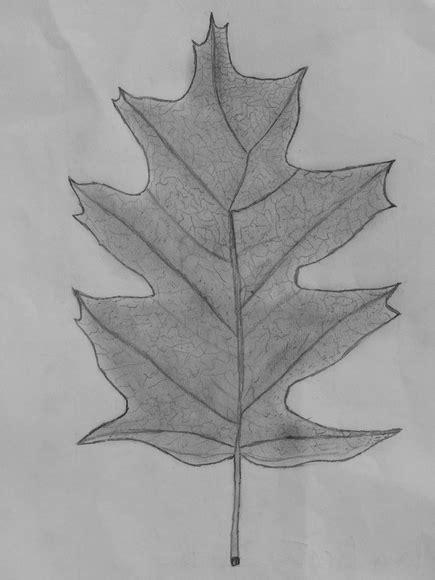 desenho criativos alunos criativos desenho