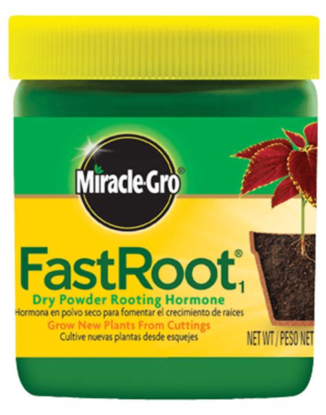 miracle gro fastroot  dry powder rooting hormone plant