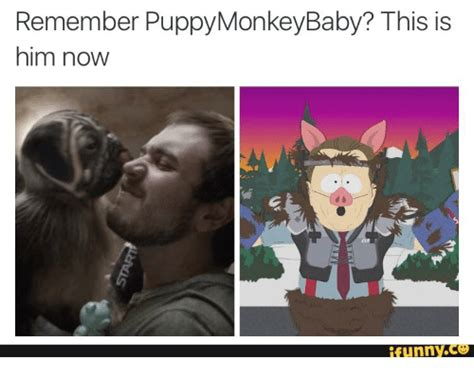 puppy monkey baby meme 25 best memes about puppy monkey baby puppy monkey baby memes