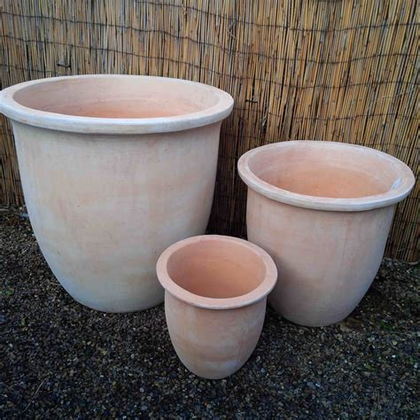 planter pot large terracotta pot planter with delivery to sw london