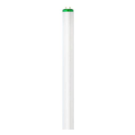 Cost Of Fluorescent Light Fixtures Philips 4 Ft T12 40 Watt Cool White Supreme Alto Linear Fluorescent Light Bulb 10 Pack 422675